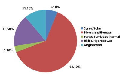 Converting Biogas into Electricity - Rumah Energi